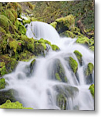 Mossy Falls Metal Print by Nicole Young