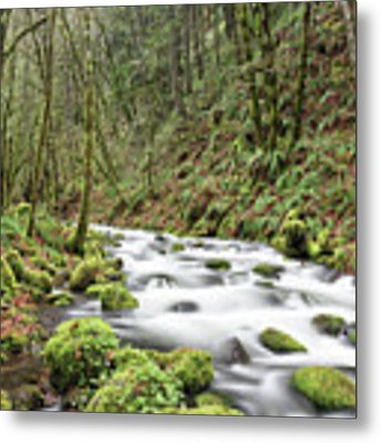 Mossy Stream Metal Print by Nicole Young