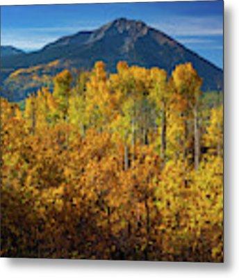 Mountains And Aspen Metal Print by John De Bord