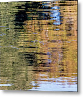 Muted Reflections Metal Print by Kate Brown