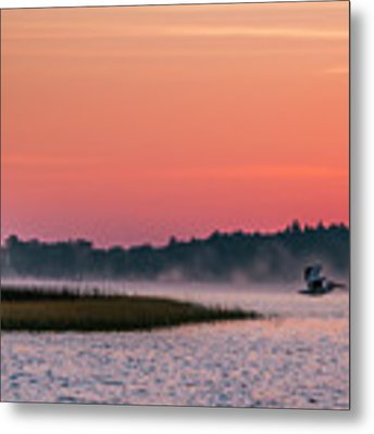 Pelican Mist Metal Print by Patti Deters