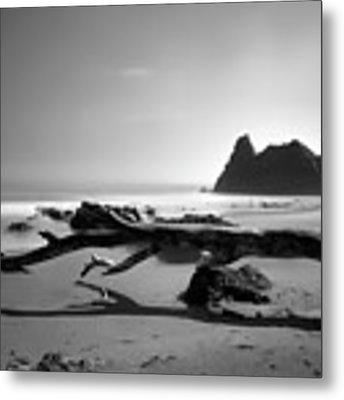 St Cyrus Beach - Scotland - Black And White Metal Print by Jason Politte