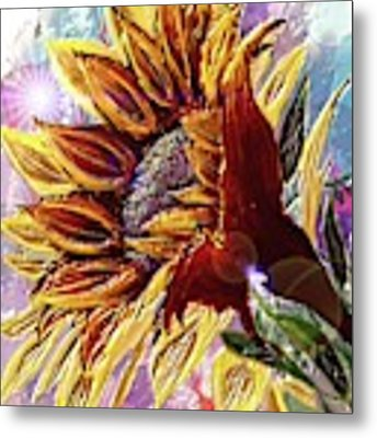 Sunflower In The Sun Metal Print by Darren Cannell