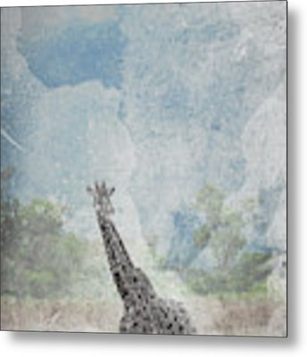 The African Giraffe Metal Print by Mary Lee Dereske