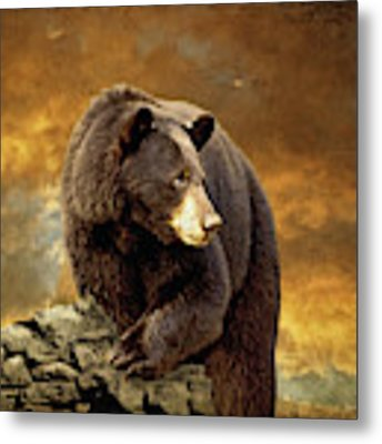 The Bear Went Over The Mountain Metal Print by Lois Bryan