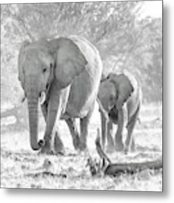 To The Watering Hole Metal Print by Rand