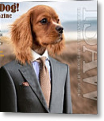 Top Dog Magazine Metal Print by ISAW Company