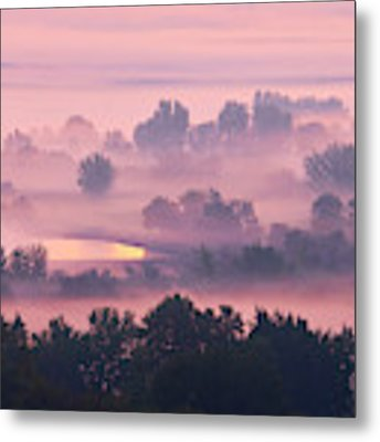 Trees In The Mist Metal Print by Whitney Goodey