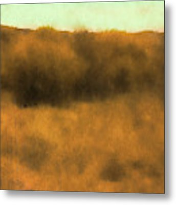 Wild And Golden Metal Print by David King