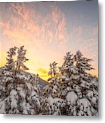 Winter's Last Light, Metal Print by Jeff Sinon