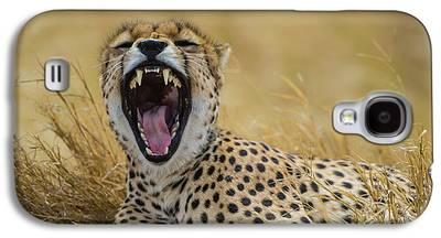Cheetah Galaxy S4 Cases