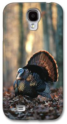 Eastern Wild Turkey Galaxy S4 Cases