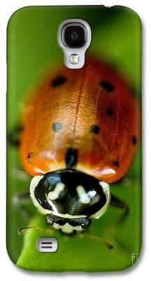 Ladybug Galaxy S4 Cases
