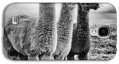 Llama Galaxy S4 Cases