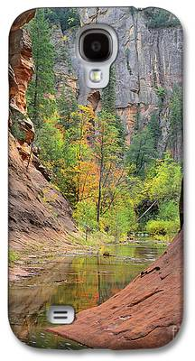 West Fork Photographs Galaxy S4 Cases