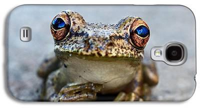 Amphibians Galaxy S4 Cases