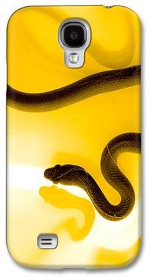 Fauna Galaxy S4 Cases