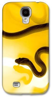 Reptile Galaxy S4 Cases