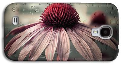 Aimelle Photographs Galaxy S4 Cases