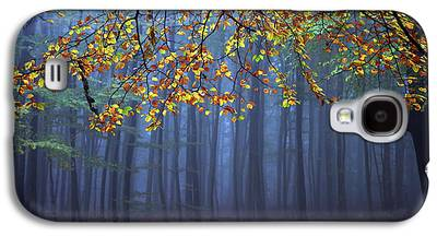 Autumn Art Galaxy S4 Cases