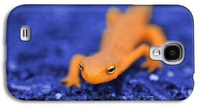 Salamander Galaxy S4 Cases