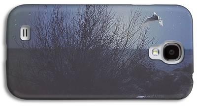 Snowy Night Galaxy S4 Cases