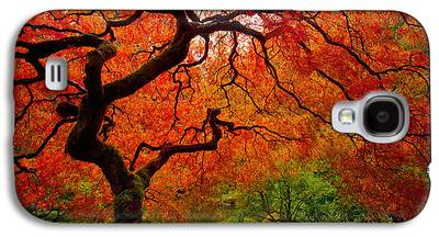 The Trees Galaxy S4 Cases