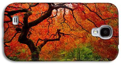 Maple Trees Galaxy S4 Cases