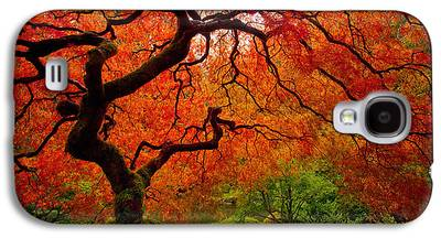 Reds Of Autumn Galaxy S4 Cases