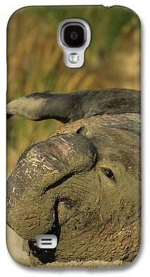 Ano Nuevo Galaxy S4 Cases