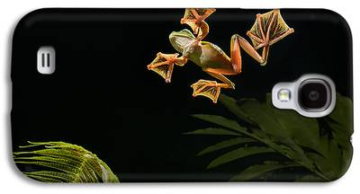 Abah River Flying Frog Galaxy S4 Cases
