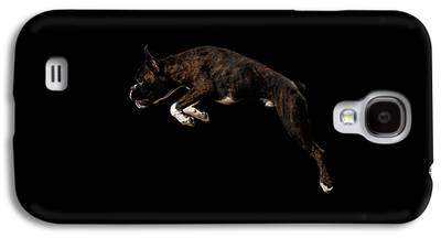 Guard Dog Galaxy S4 Cases