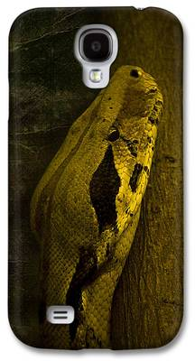 Brown Snake Galaxy S4 Cases