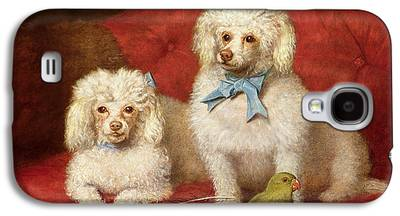 Poodle Galaxy S4 Cases