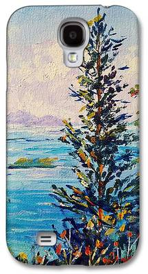 Arial View Paintings Galaxy S4 Cases