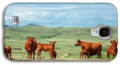 Angus Steer Galaxy S4 Cases