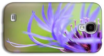 Centaurea Montana Galaxy S4 Cases