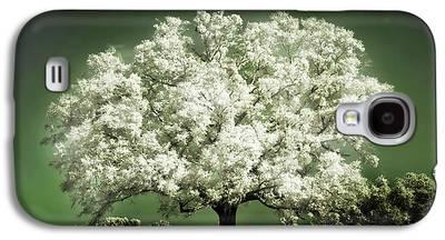 Cherry Tree Galaxy S4 Cases