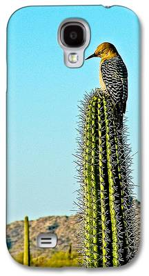 Woodpecker Galaxy S4 Cases