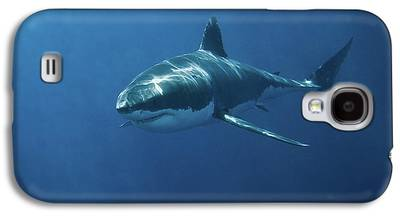 Sharks Galaxy S4 Cases