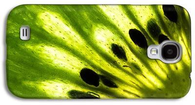 Kiwi Galaxy S4 Cases
