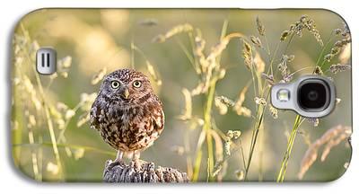 Hunting Bird Galaxy S4 Cases