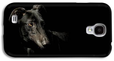 Greyhound Photographs Galaxy S4 Cases