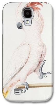 Parakeet Galaxy S4 Cases