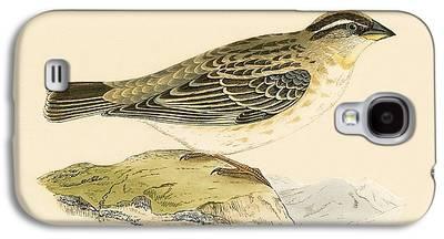 Sparrow Galaxy S4 Cases