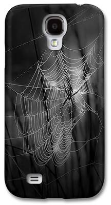 Spider Galaxy S4 Cases