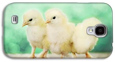 Three Chicks Galaxy S4 Cases