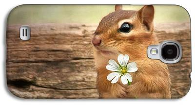 Squirrel Digital Art Galaxy S4 Cases
