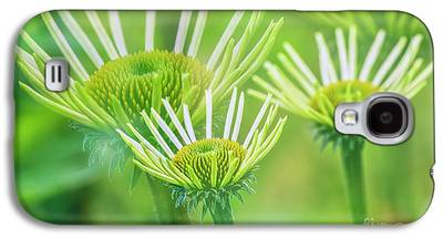 Abstracted Coneflowers Galaxy S4 Cases