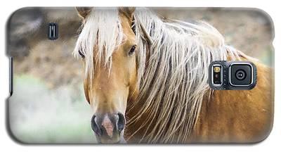 Mustang Palomino  Galaxy S5 Case